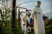 """Phát hiện """"lá chắn"""" chống virus Ebola trong tế bào người"""