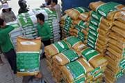 EU có thể áp thuế đối với gạo nhập khẩu từ Campuchia và Myanmar