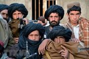 Afghanistan đề nghị Liên hợp quốc can thiệp hội đàm Pakistan-Taliban