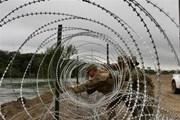 Thượng nghị sỹ Mỹ quan ngại về tuyên bố tình trạng khẩn cấp quốc gia
