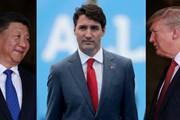 Canada không 'tận dụng' được cuộc chiến thương mại Mỹ-Trung