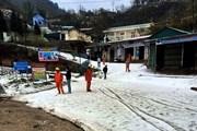 Hình ảnh mưa đá phủ trắng như tuyết gây thiệt hại lớn tại Lai Châu