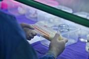 Cận cảnh Ngân hàng sữa mẹ đầu tiên của miền Bắc ở Quảng Ninh