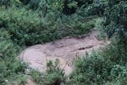 Cát tặc hoành hành, vùng đệm rừng đặc dụng dưới chân núi cầu cứu