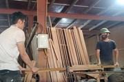 [Photo] Những người thợ ở làng mộc Yên Lạc hối hả với nghề