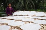 [Photo] Làng nghề làm bánh, mứt ở Bến Tre nhộn nhịp trong dịp Tết