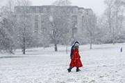 Hình ảnh các nước châu Âu chìm trong giá lạnh và bão tuyết