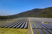 Năng lượng tái tạo của Việt Nam phát triển nhanh nhất Đông Nam Á