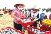 Người Quảng Bình góp cá gửi nhân dân vùng dịch Thành phố Hồ Chí Minh
