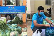 'Chuyến xe nghĩa tình' chở rau củ đến tâm dịch TP.HCM, Bình Dương