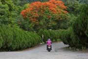 Đắm mình trong không gian vườn sinh thái lớn nhất Đài Loan