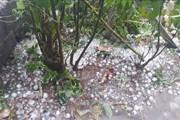 Mưa lớn ở vùng núi Bắc Bộ và Bắc Trung Bộ đề phòng lốc, sét, mưa đá
