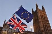 Brexit: Việc đạt thỏa thuận khó khăn hơn so với dự đoán