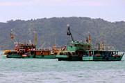 Ngư dân Indonesia muốn sớm phân định biên giới biển với Malaysia