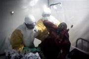 WHO đánh giá cao nỗ lực phòng tránh dịch Ebola của Uganda