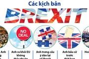 [Infographics] Các kịch bản Brexit có thể xảy ra trong tương lai
