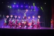 [Photo] Độc đáo chương trình nghệ thuật 'Hương sắc Quê Thanh'