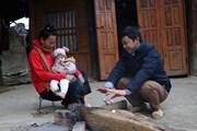 Điện Biên: Nền nhiệt giảm sâu, người dân ứng phó với rét đậm, rét hại