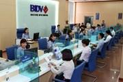 BIDV lên tiếng về tin đồn 'Phòng giao dịch Hòn La phá sản'