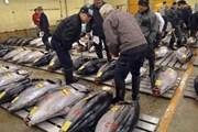 Nhật kiến nghị Hàn Quốc bỏ lệnh cấm nhập khẩu cá