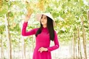 [Photo] Dàn người đẹp Hoa hậu Việt Nam khám phá đặc sản Ninh Thuận