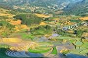 Y Tý mùa nước đổ: Những bức họa tuyệt đẹp lưng chừng trời