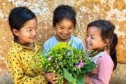 Thôn cổ Choản Thèn: Nơi những nụ cười Hà Nhì gây thương nhớ