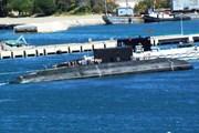 [Photo] Xây dựng Hải quân nhân dân cách mạng, vững mạnh toàn diện