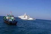[Photo] Cảnh sát biển Vùng 2 đồng hành với ngư dân huyện đảo Lý Sơn