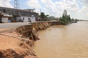 [Photo] An Giang: Một đoạn Quốc lộ 91 sụp hoàn toàn xuống sông Hậu