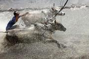 [Photo] Độc đáo những lễ hội truyền thống ở miền Tây Nam Bộ