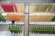 Trung Quốc: Độc đáo mỳ sợi nhiều màu sắc của người dân Sơn Đông