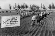 Đảng lãnh đạo đẩy mạnh thi đua yêu nước trong kháng chiến chống Mỹ