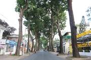 Người Hà Nội và TP. Hồ Chí Minh hạn chế đi lại, đường phố vắng lặng