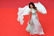 [Photo] Liên hoan phim Cannes 2019: Hứa hẹn nhiều hấp dẫn