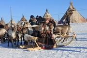 [Photo] Rực rỡ sắc màu lễ hội người chăn hươu phương Bắc Nga