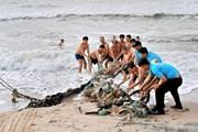 [Photo] Bình Thuận ra quân thực hiện chiến dịch Clean Up Day