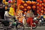 Diễn viên trẻ xúng xính đón Xuân trong trang phục truyền thống