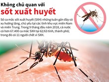 [Infographics] Hơn 67.400 ca mắc sốt xuất huyết trong 9 tháng