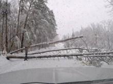 Bão tuyết đổ vào Đông Nam nước Mỹ khiến 3 người thiệt mạng