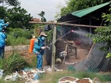 Phú Yên: Xuất hiện cúm gia cầm H5N6 có khả năng lây sang người