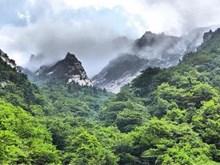 Hai miền Triều Tiên kỷ niệm 20 năm ngày mở tuyến du lịch núi Geumgang