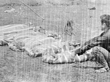 Hình ảnh tội ác của quân phản động Pol Pot với người dân Việt Nam
