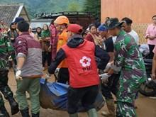 Sạt lở đất nghiêm trọng tại Indonesia khiến hàng chục người mất tích