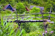 Làng Cù Lần: Bí ẩn giữa rừng thông cao nguyên Lâm Đồng