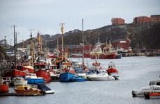 Liên minh châu Âu hỗ trợ phát triển bền vững tại Greenland
