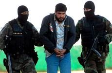 Mỹ xét xử trùm tội phạm ma túy Mexico Beltran Leyva