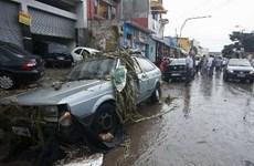 Thành phố Sao Paulo chịu thiệt hại nặng nề do mưa bão và ngập lụt