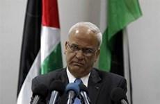 Palestine: Israel phong tỏa khoản tiền thuế là tội ác chiến tranh