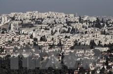 Số nhà định cư Do Thái của Israel ở khu Bờ Tây tăng 40%